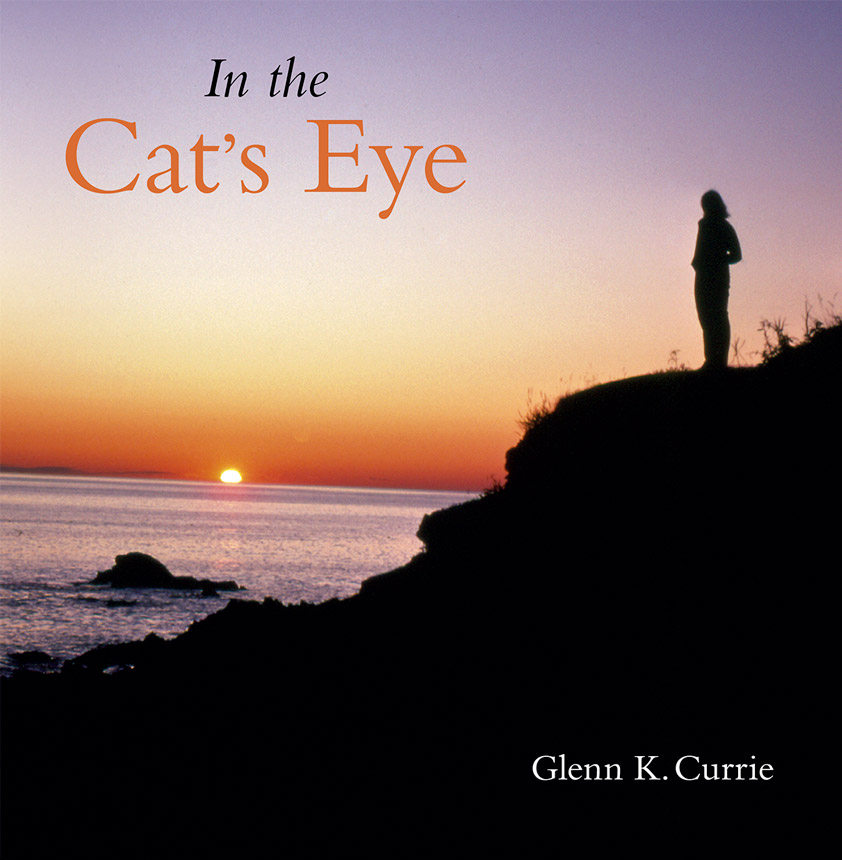 In the Cat's Eye